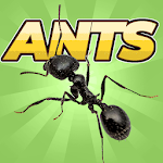 Cover Image of Download Pocket Ants: Colony Simulator APK